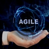 Agile Anti-Patterns: A Systems Thinking Approach