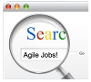 Finding an Agile Employer