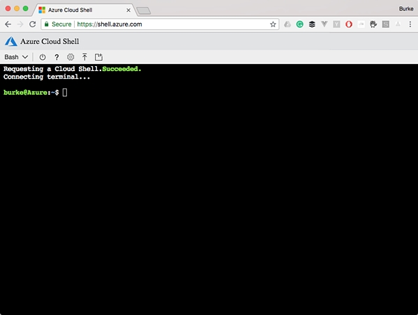 The Best CLI Is the One You Don't Have to Install