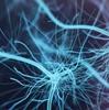 Evolution of Azure Synapse: Apache Spark 3.0, GPU Acceleration, Delta Lake, Dataverse Support