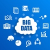Big Data and IT-Enabled Services: Ecosystem and Coevolution?