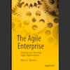 Q&A on the Book Agile Enterprise