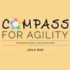 Entrevista sobre o livro Compass of Agility - Como navegar em tempos de mudanças rápidas
