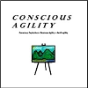 Q&A on Conscious Agility