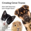 Q&A on Creating Great Teams