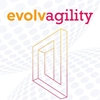 Q&A on the Book Evolvagility: Growing an Agile Leadership Culture from the inside out