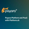 Cloud-native com Payara e Platform.sh