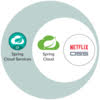 Desmistificando o Spring Cloud Netflix