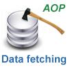 J2EEアプリケーションにおけるAOPを使ったフェッチ戦略の実装