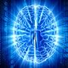 Introdução ao aprendizado de máquinas