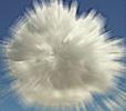Desenvolvimento em cloud: os IDEs foram para a nuvem