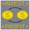 Investing in Impact - Portfolio Management for Agile Deliveries