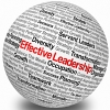 Author Q&A on Leading without Authority
