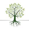 """Perguntas e Respostas com Dan Szuc e Jo Wong sobre o framework """"Make Meaningful Work"""""""