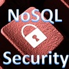 Virtual Panel: Security Considerations in Accessing NoSQL Databases