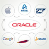 Oracle and the Java Ecosystem