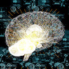 Ataques de privacidade em modelos de Machine Learning
