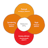 O desafio de construir um ecossistema orientado a eventos de tempo real que seja confiável