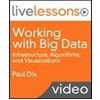 Interview and Video Review: Working with Big Data: Infrastructure, Algorithms, and Visualizations