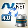 SOA Master Data Management in .NET 4.0