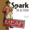 Spark in Action revisão e entrevista com autores