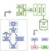 A Hard Look at the Organizational Implications of BPM