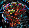 Arquitetura do SpiderDuck em detalhes: o novo serviço de processamento de links do Twitter