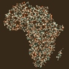 Ushahidi and the Power of Crowdsourcing