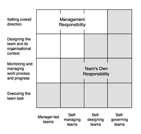 Image result for management agile levels autonomous teams