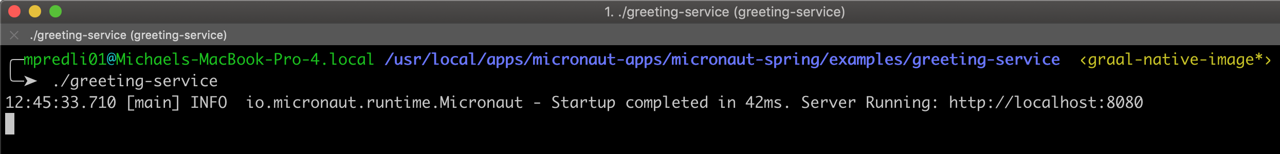 Micronaut for Spring Allows Spring Boot Apps to Run as