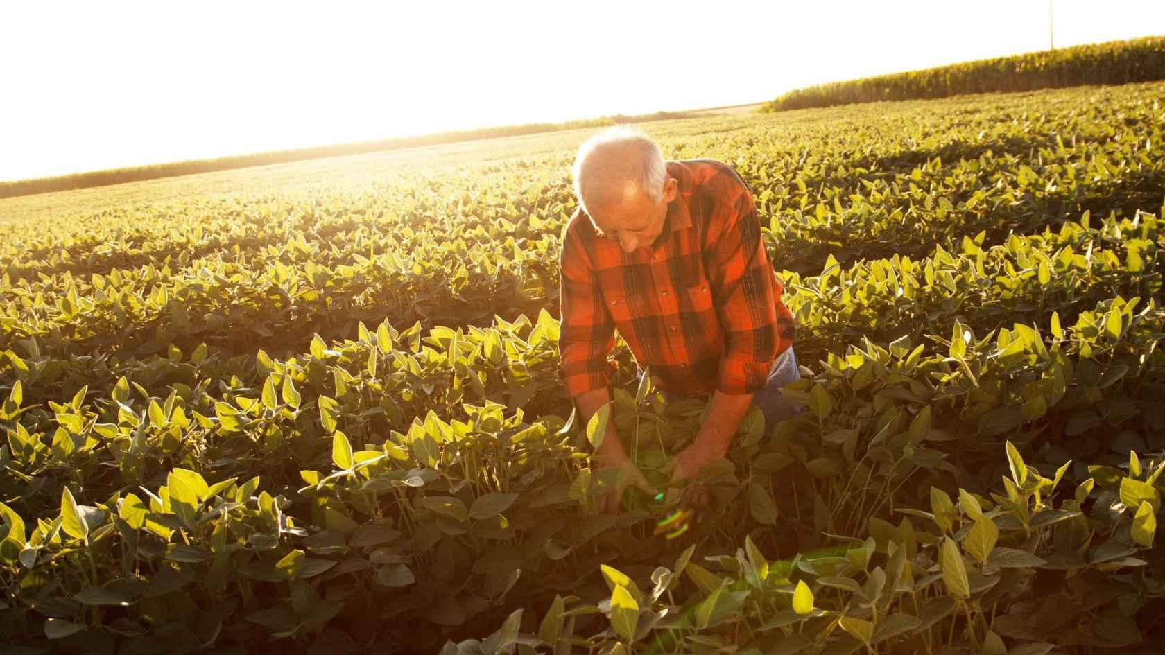 Agricultura 4.0: Dispositivos de medição, desafios e aprendizados ...