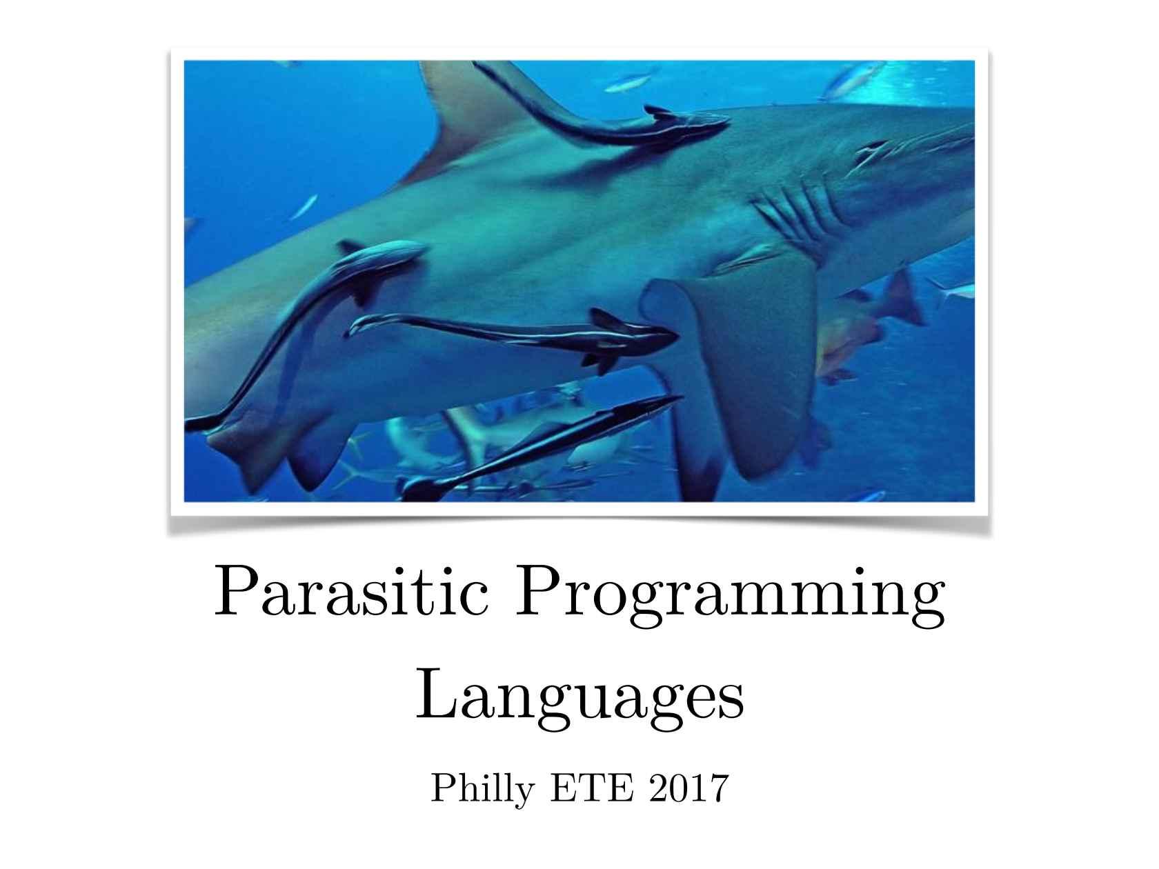 focus programming language